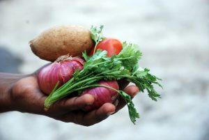 Eine ganz tolle Sache – foodsharing e.V.