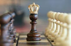 Der König auf dem Schachbrett: Was sind Ehrenmitglieder und welche Rechte haben sie?