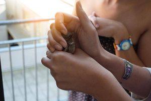 Ehrenamt im Lebenslauf: Ist soziales Engagement immer ein Vorteil?
