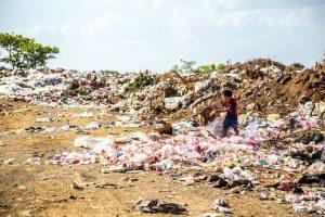 Umweltschutz im Verein – Eine gesellschaftliche Verantwortung?