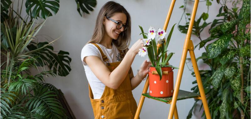Gartenarbeit absetzen Titelbild