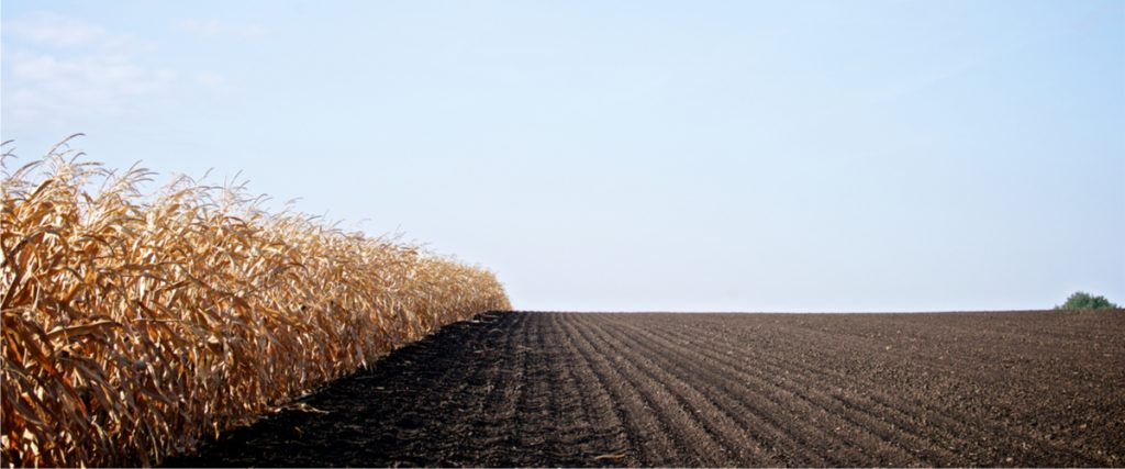 Risikoausgleichsrücklage für Landwirte
