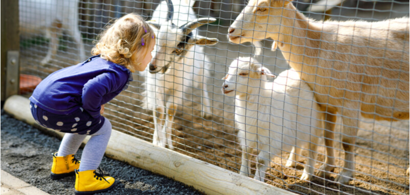 News: 100 Euro Kinderfreizeitbonus ab August