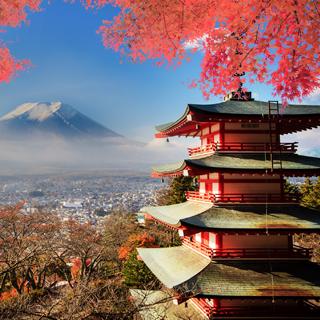 verbraucherblick 10/2017 Unterwegs in Tokio