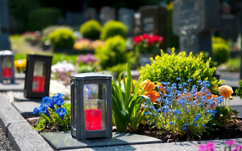 Grabpflege organisieren