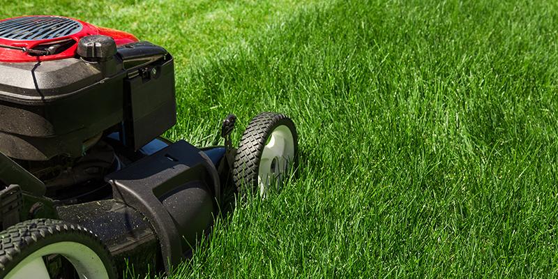 Ein Rasenmäher ist auf der Wiese abgebildet.