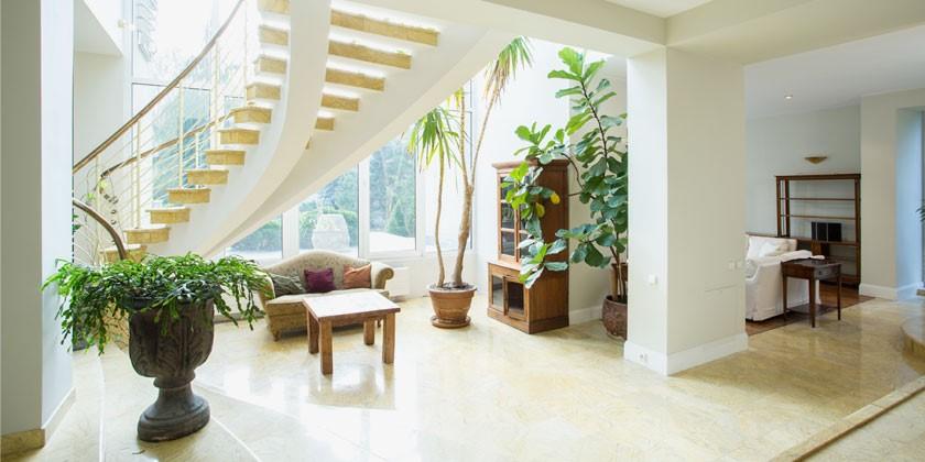 WEG: Pflanzenschmuck im Treppenhaus