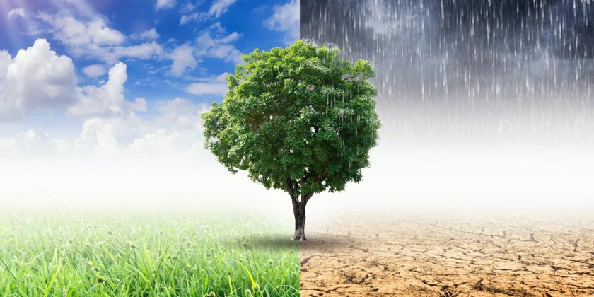 Was bringt das Klimapaket?