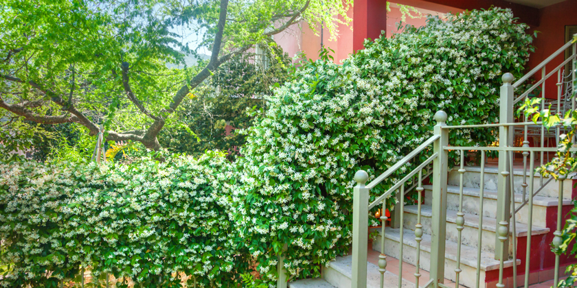 WEG: Unzulässige Treppe beseitigen